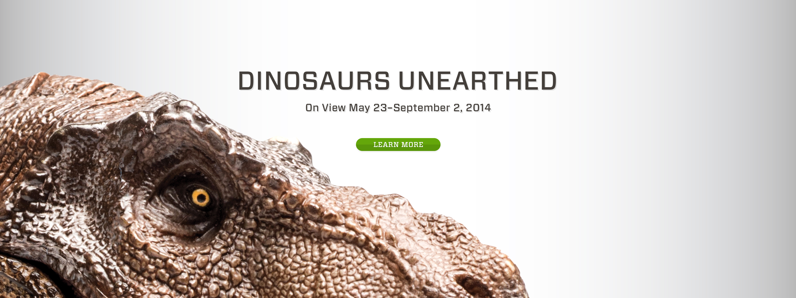 Dinosaurs Unearthed: Opening May 23