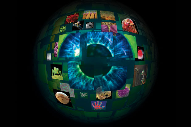 Image of human eye along with other unseen objects from our world.