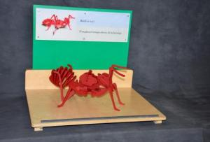 Assemble an Ant Tabletop
